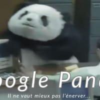 Pénalité Google Panda en SEO