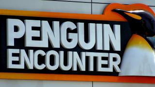 Rencontre avec Google Penguin
