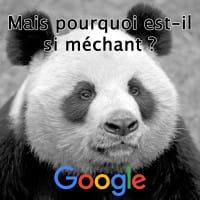 Lever une pénalité Google Panda