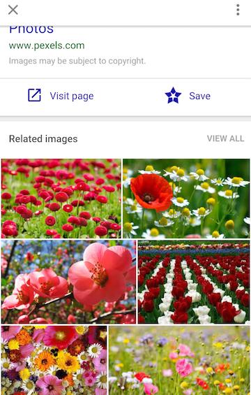 Galerie de photos dans Google Images (02/2016)