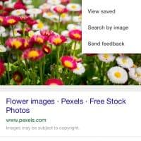 Nouveau menu de Google Images sur mobile (2016)