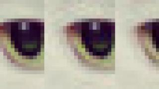 Algorithme de compression JPEG Guetzli
