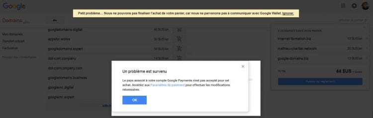 Test ou bug de Google Domains en France