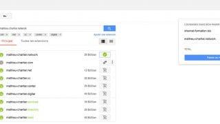 Choix d'un nom de domaine sur Google Domains