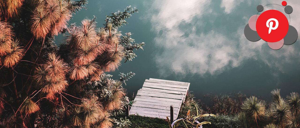 Pinterest étudie les requêtes sur l'environnement durable et l'écologie pour débutants